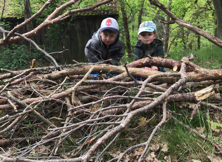 Wald- und Wiesengruppe wird schon genutzt